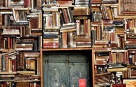 «Lectures Diverses» —un club de lectura sense barreres. Curs 2021
